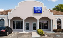 animal eye specialty clinic